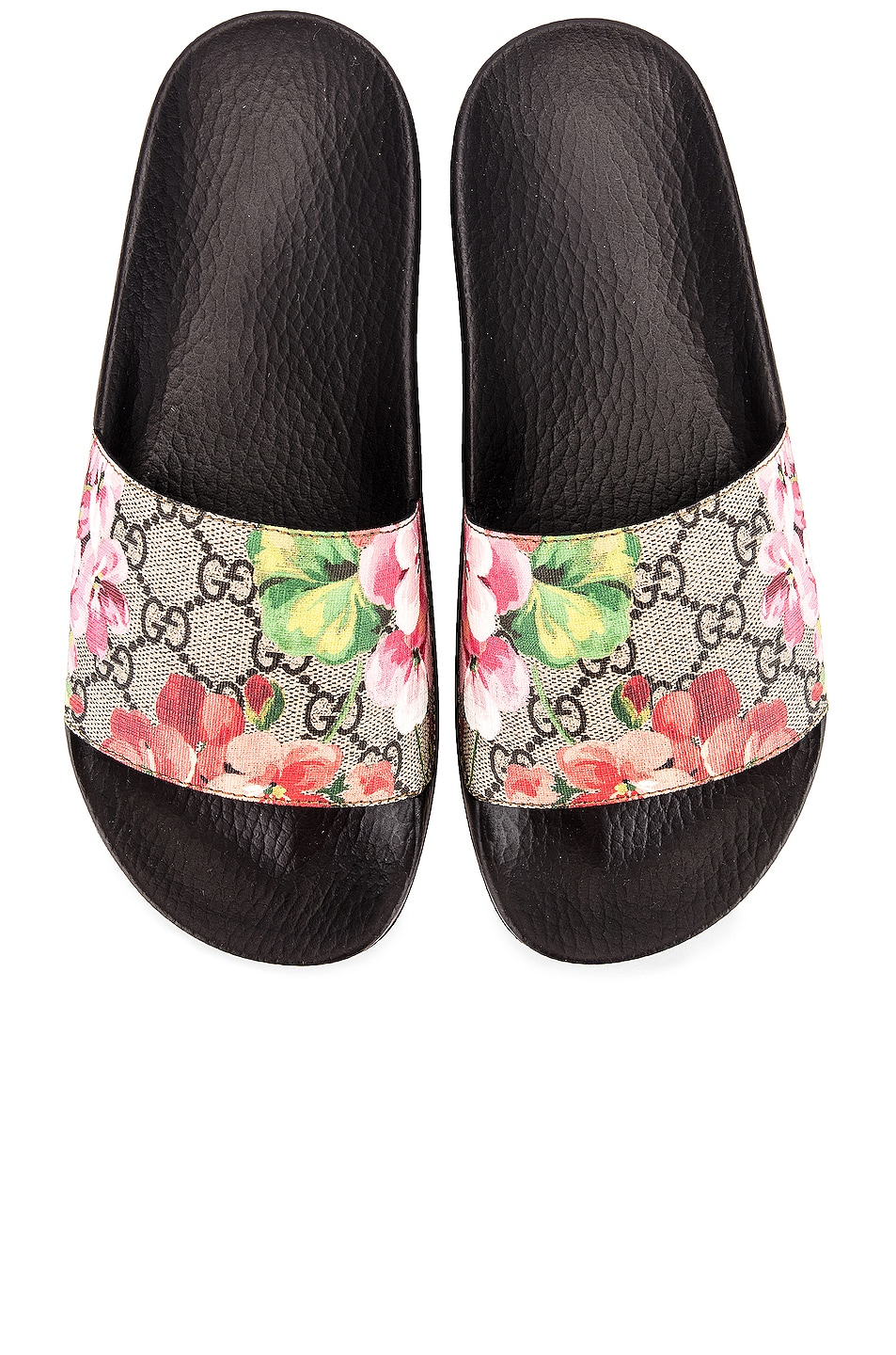 Image 1 of Gucci Pursuit GG Supreme Flora Slides in Beige Ebony & Multicolor