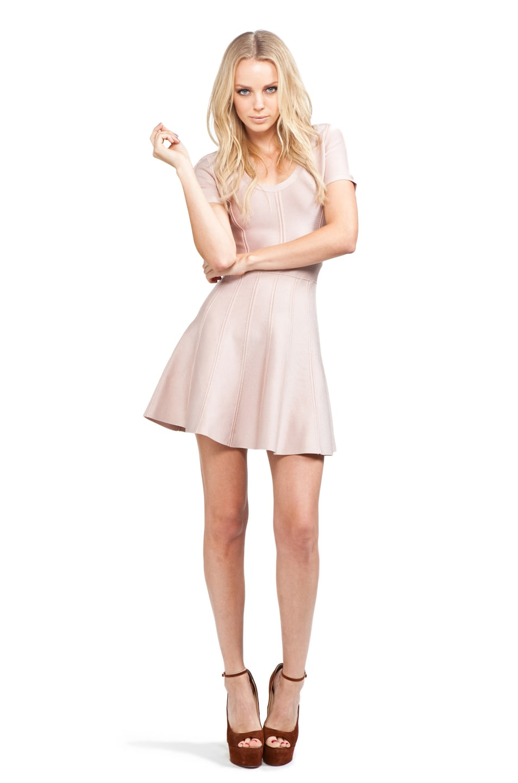 Image 1 of Herve Leger Flare Skirt Dress in Bare