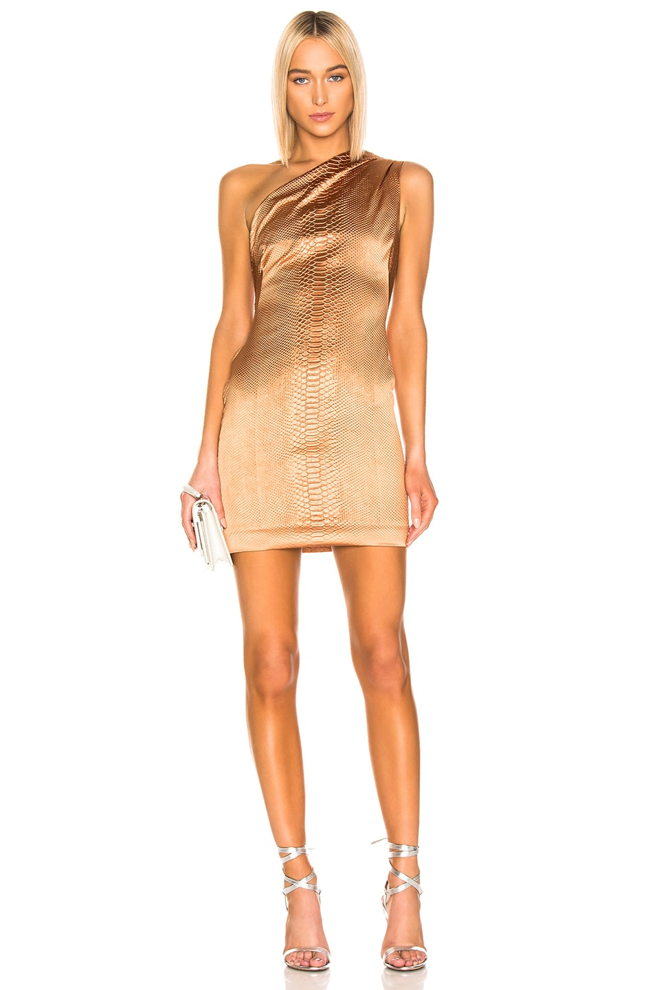 Image 1 of HANEY Valentina Dress in Caramel
