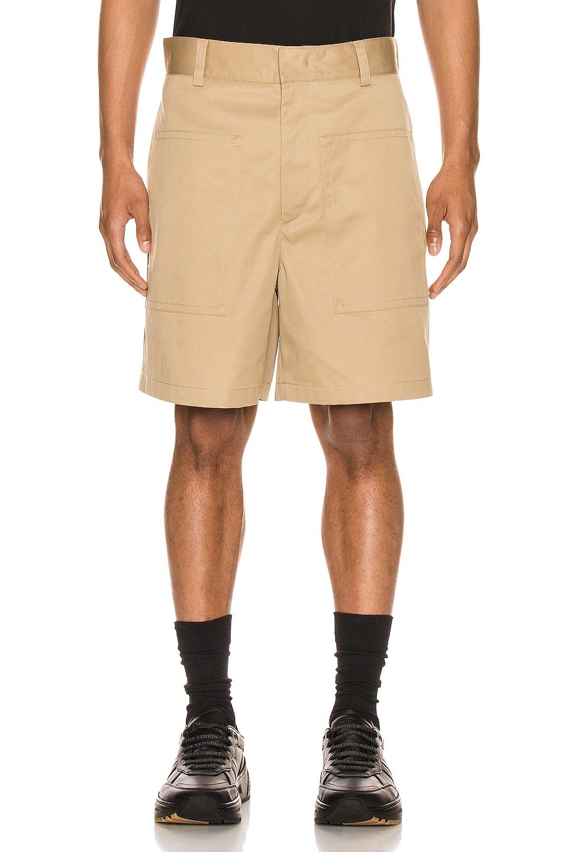 Image 1 of Jil Sander Auriel Shorts in Light & Pastel Brown