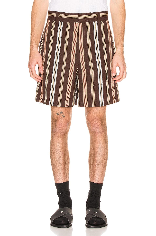Image 1 of Jil Sander Auriel Shorts in Open Brown