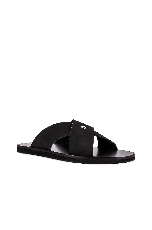Image 1 of Jil Sander Strap Sandal in Black