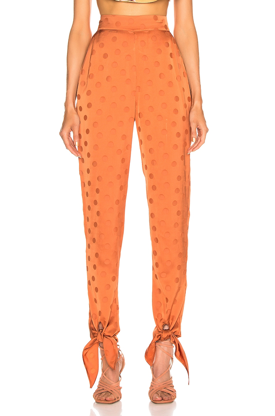 Image 1 of Johanna Ortiz Spicy Tree Pant in Copper Tan