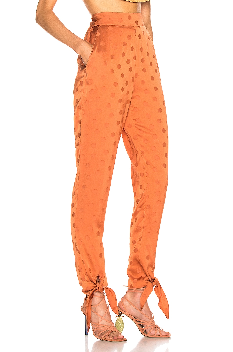 Image 2 of Johanna Ortiz Spicy Tree Pant in Copper Tan
