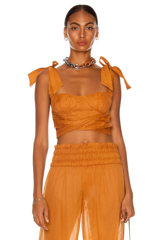 Image 1 of Johanna Ortiz Odisea Top in Spicy Rust