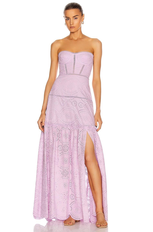 Image 1 of JONATHAN SIMKHAI Juliette Bustier Dress in Lilac
