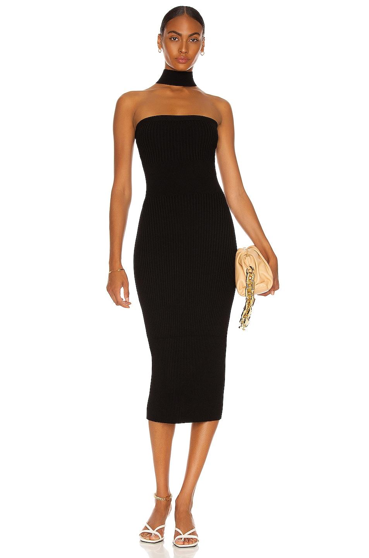 Image 1 of JONATHAN SIMKHAI Selena Tube Dress in Black