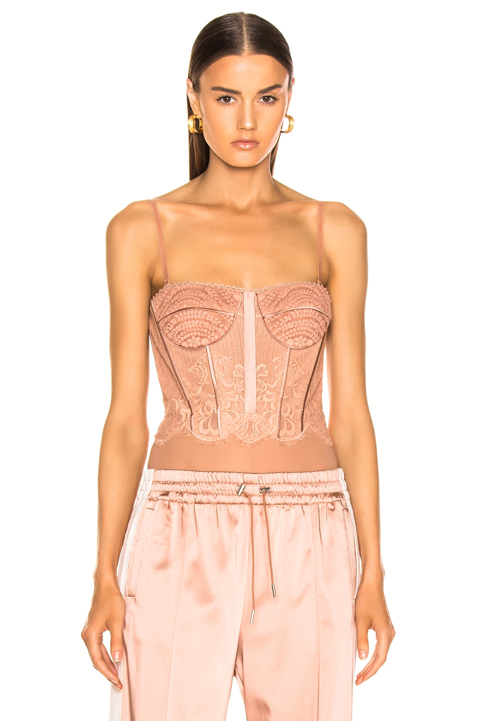 Image 1 of JONATHAN SIMKHAI for FWRD Mixed Lace Bustier Bodysuit in Nude