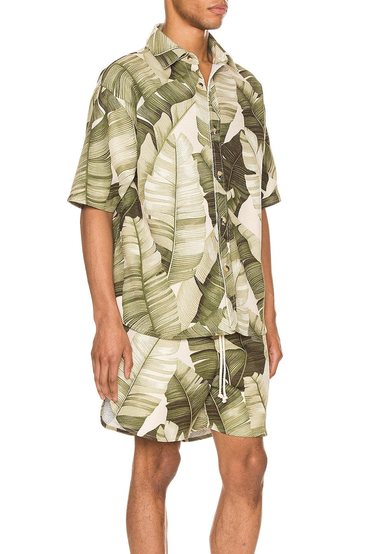 Image 2 of Jungle Kailo Short Sleeve Shirt in Cream Banana Leaf