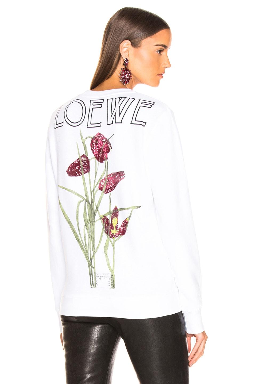 Image 1 of Loewe Logo Botanical Sweatshirt in White