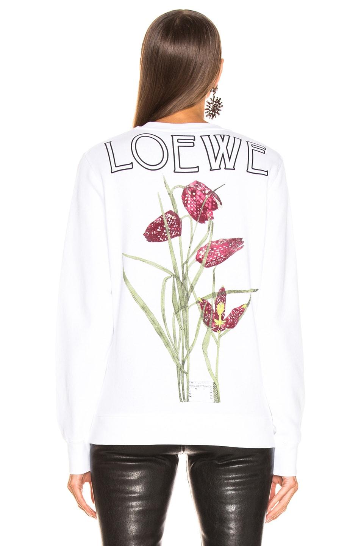 Image 5 of Loewe Logo Botanical Sweatshirt in White