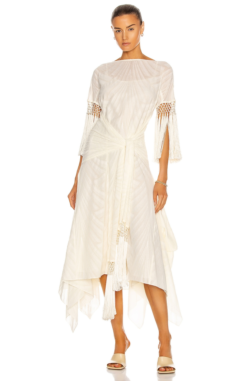 Image 1 of Loewe Scarf Fringed Dress in Ivory & White