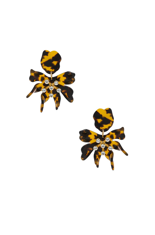 Image 1 of Lele Sadoughi Daffodil Earrings in Tortoise