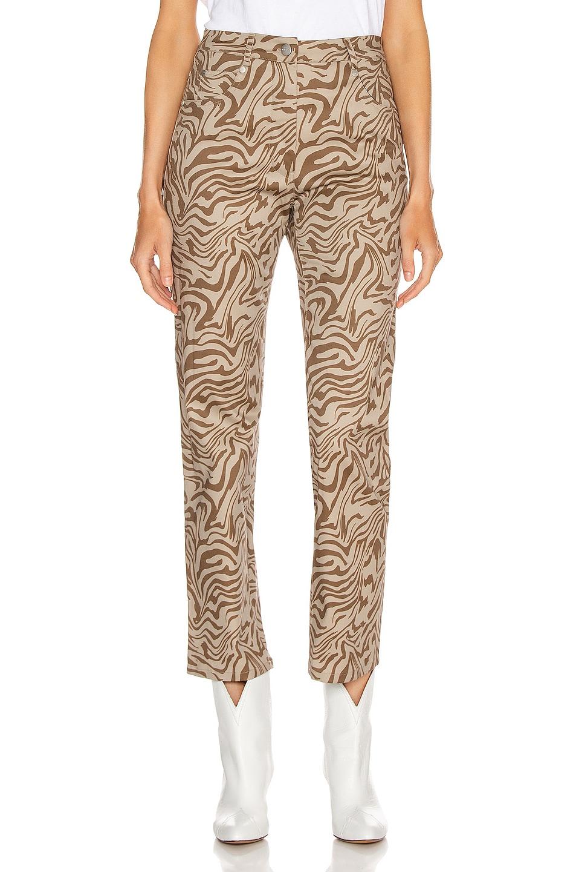 Image 1 of Miaou Zip Fly Junior Pant in Tan Zebra