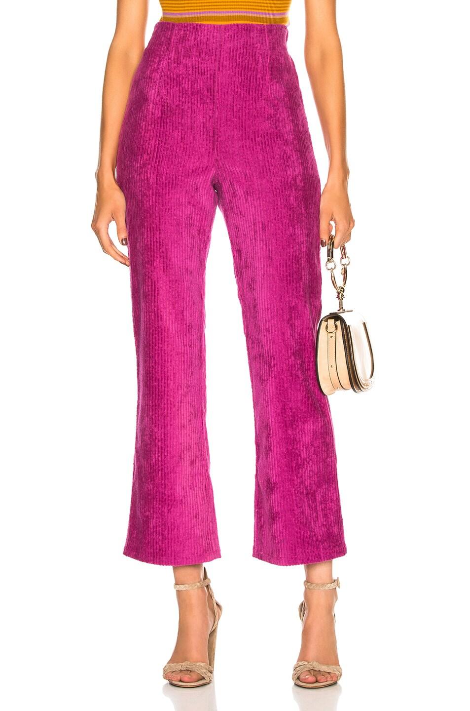 MARA HOFFMAN 'Lucy' Cordhose in Purple