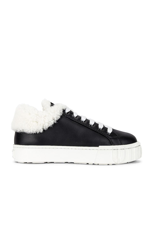 Image 1 of Miu Miu Lace Up Sneakers in Nero & Natural