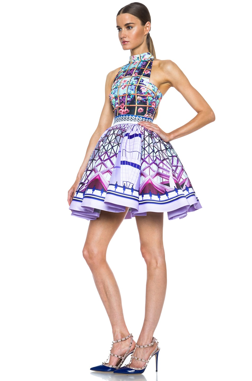 Image 2 of Mary Katrantzou Trinkolo Poly Dress in Foli Rose Runner