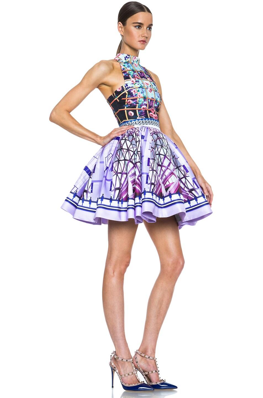 Image 3 of Mary Katrantzou Trinkolo Poly Dress in Foli Rose Runner