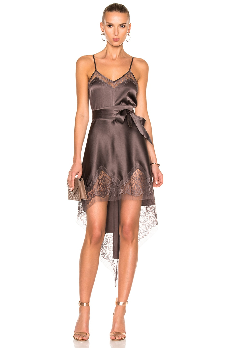 Image 1 of Michelle Mason Lace Inset Dress in Truffle