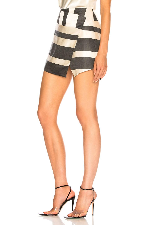 Image 3 of Michelle Mason Mini Skirt in Black Stripe