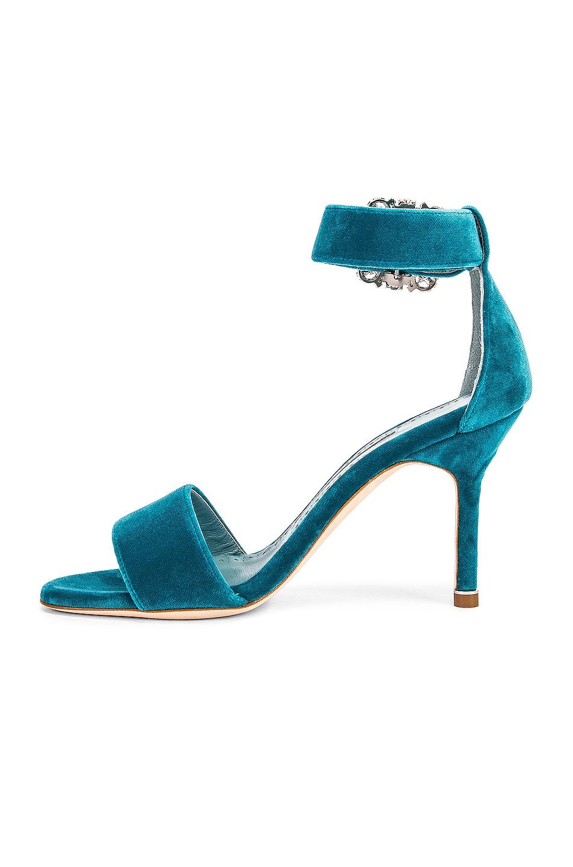 Image 5 of Manolo Blahnik Sanghal 90 Velvet Sandal in Turquoise