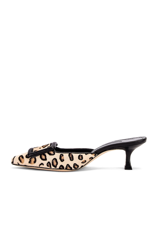 Image 5 of Manolo Blahnik Maysale 50 Heel in Leopard