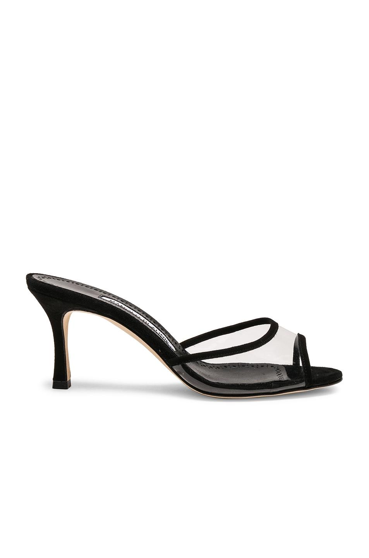 aae81ac4a Image 1 of Manolo Blahnik PVC Sissavy Sandals in Black Suede