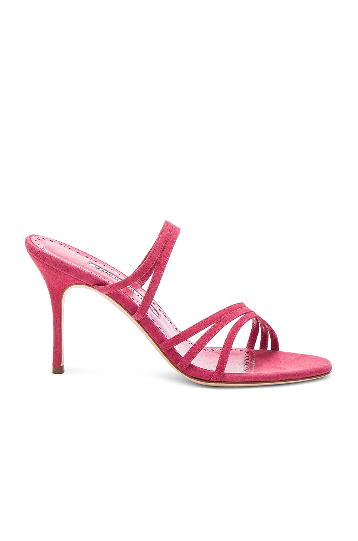 Image 1 of Manolo Blahnik Andena 90 Sandal in Fandango Watermelon Pink Suede
