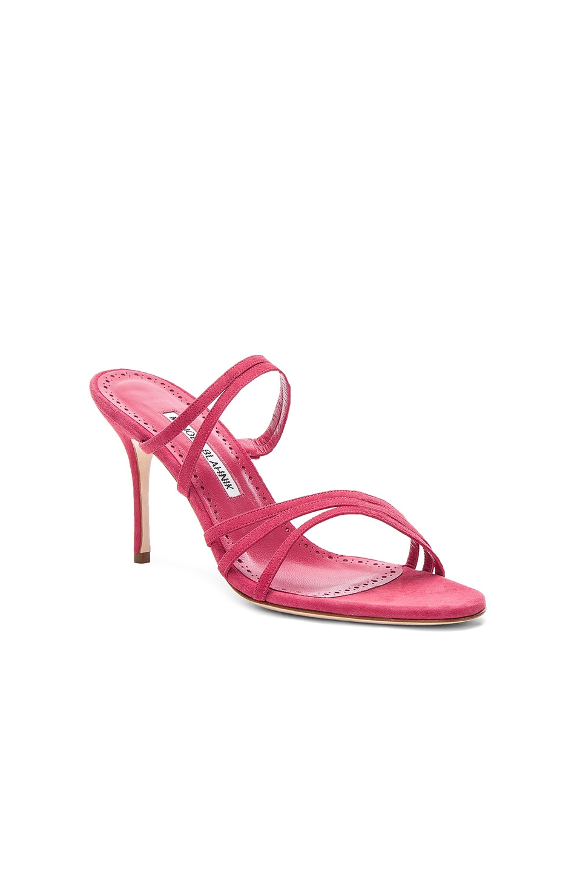 Image 2 of Manolo Blahnik Andena 90 Sandal in Fandango Watermelon Pink Suede