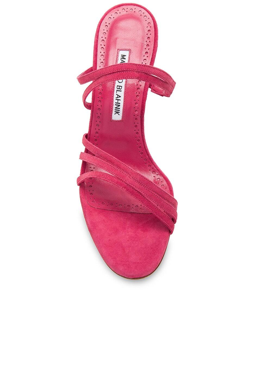 Image 4 of Manolo Blahnik Andena 90 Sandal in Fandango Watermelon Pink Suede