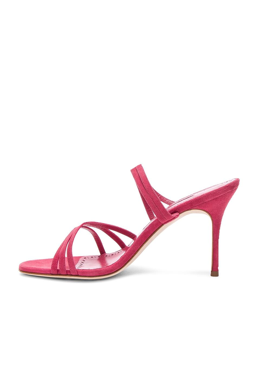 Image 5 of Manolo Blahnik Andena 90 Sandal in Fandango Watermelon Pink Suede