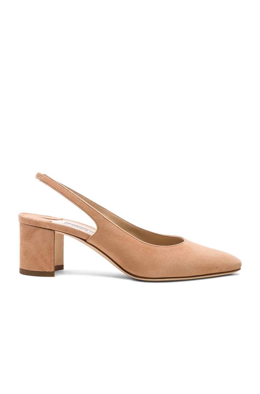 Image 1 of Manolo Blahnik Suede Allurasa 50 Heels in Beige Suede