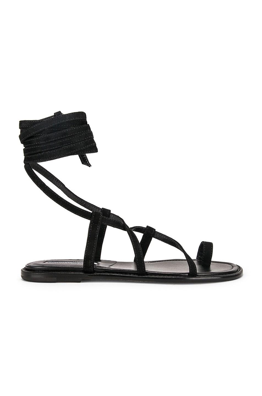 Image 1 of Manolo Blahnik Primathi Sandal in Black Suede