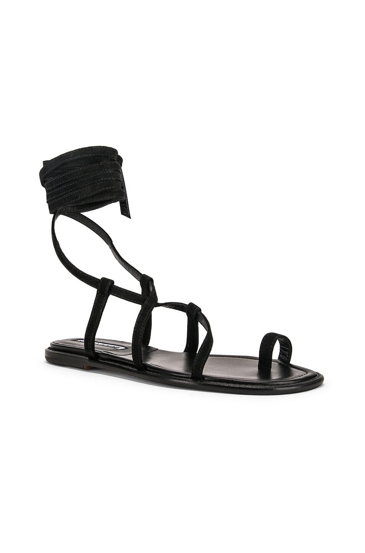 Image 2 of Manolo Blahnik Primathi Sandal in Black Suede