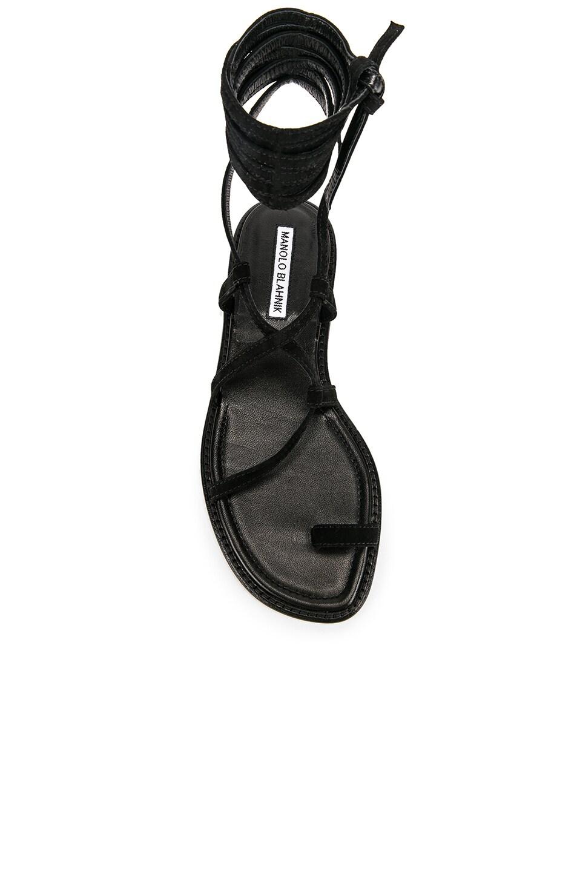 Image 4 of Manolo Blahnik Primathi Sandal in Black Suede