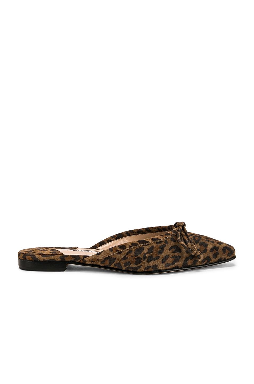 Image 1 of Manolo Blahnik Ballerimu Slide in Leopard Suede