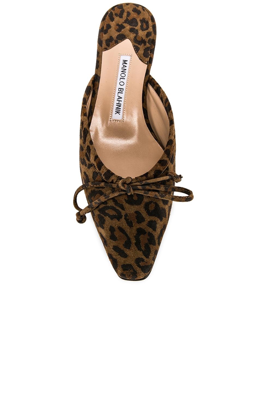 Image 4 of Manolo Blahnik Ballerimu Slide in Leopard Suede