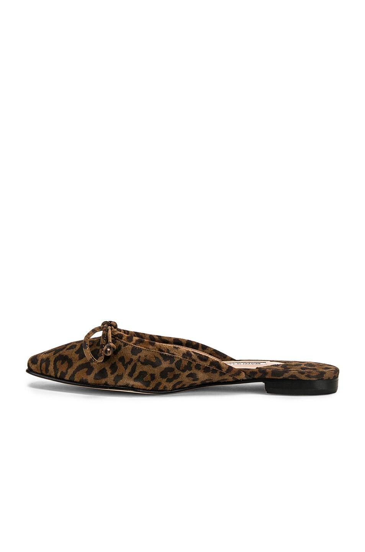 Image 5 of Manolo Blahnik Ballerimu Slide in Leopard Suede