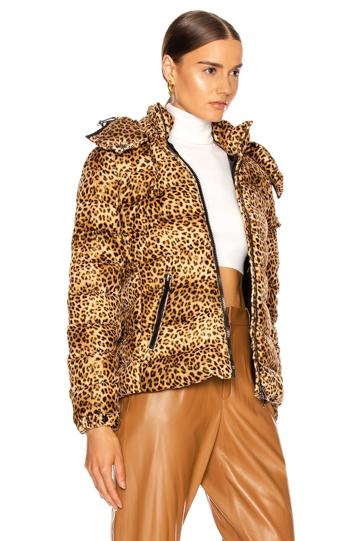 Image 3 of Moncler Bady Jacket in Leopard