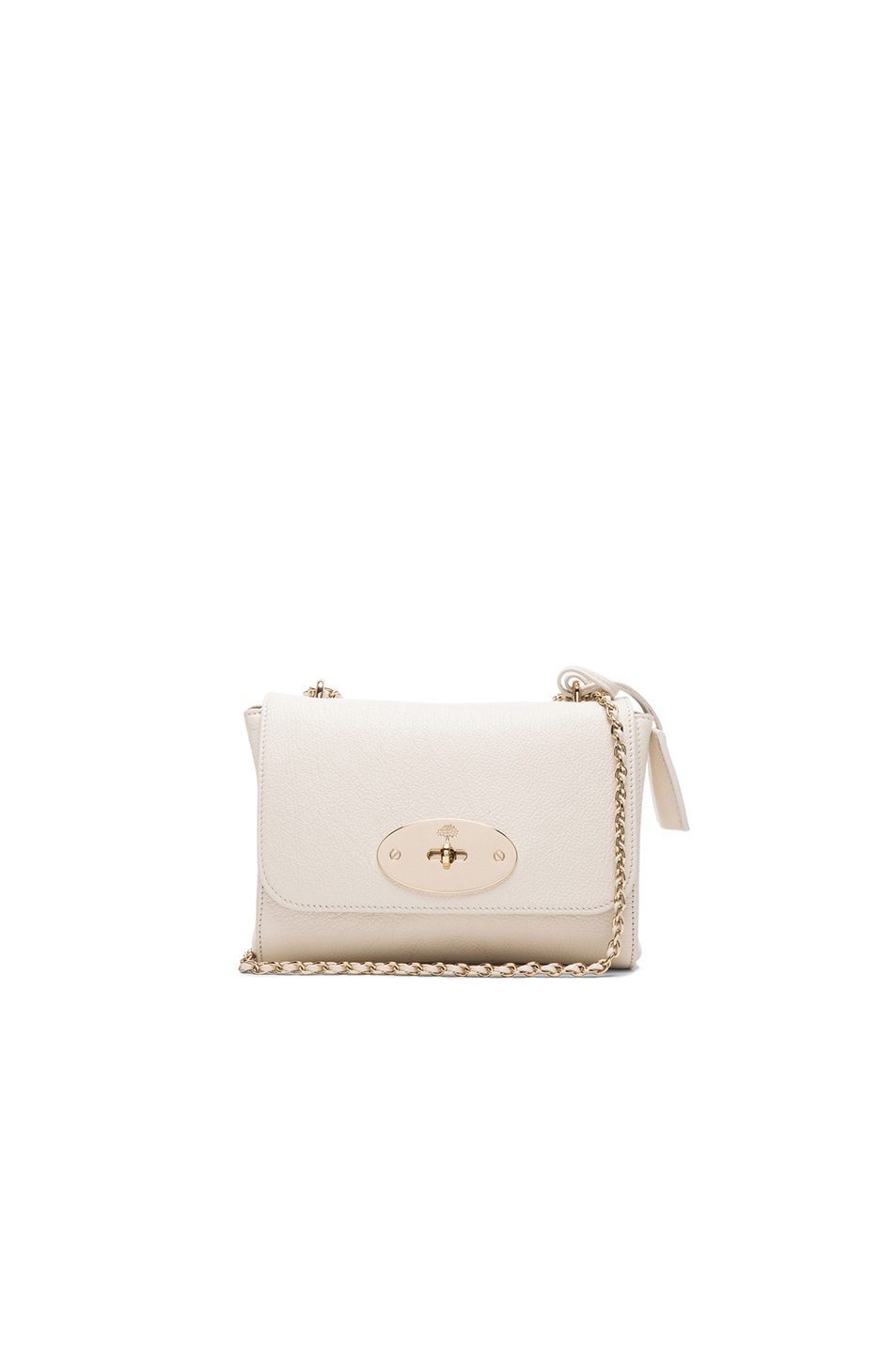 Image 1 of Mulberry Lily in Cream