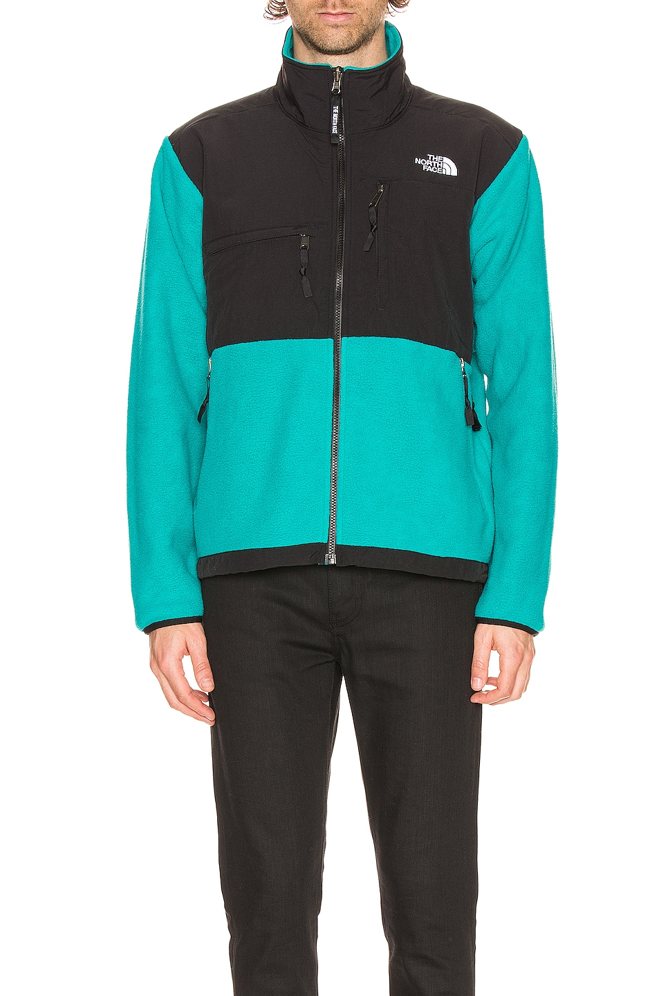 Image 1 of The North Face Black ICON 95 Retro Denali Jacket in Jaiden Green