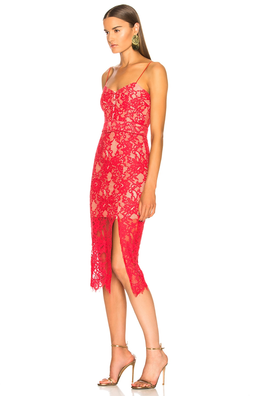 Image 3 of NICHOLAS Rubie Lace Bra Dress in Watermelon
