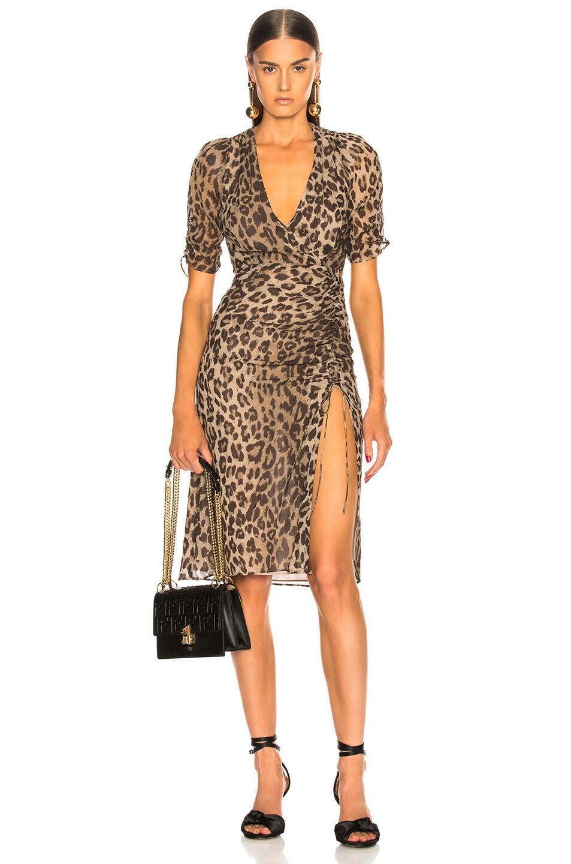 Image 1 of NICHOLAS Tea Dress in Leopard