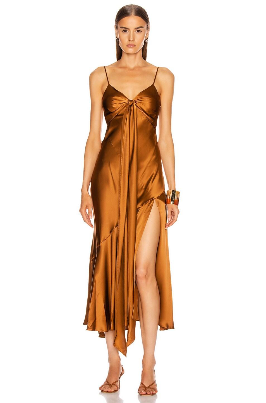 Image 1 of NICHOLAS Sabine Dress in Bronze