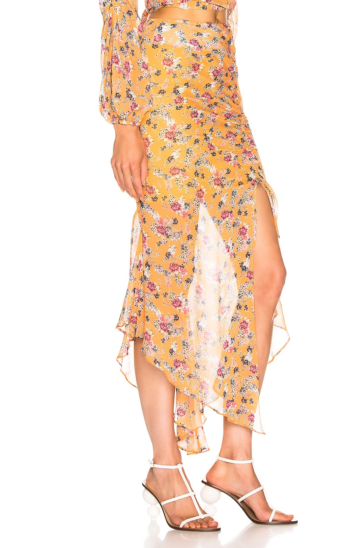 Image 2 of NICHOLAS Drawstring Skirt in Honey Multi
