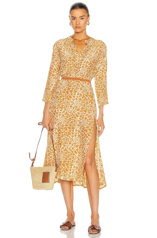 Image 1 of Natalie Martin Isobel Dress in Ivy Cinnamon Dark