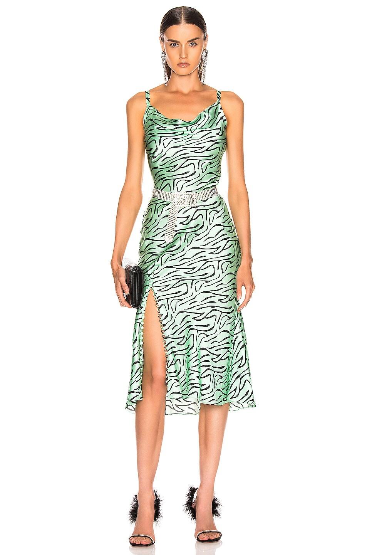 Image 1 of Olivia Rubin Lia Slip Dress in Mint Zebra