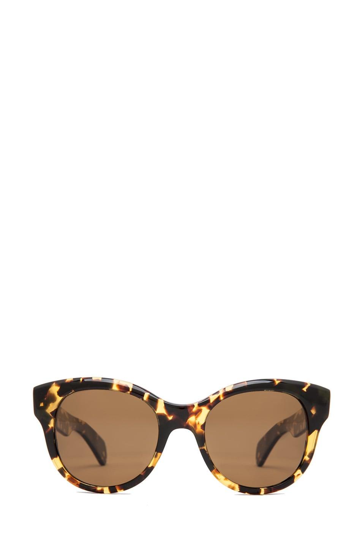 17da55c7c0 Image 1 of Oliver Peoples Jacey Polarized Sunglasses in Dark Tortoise Brown