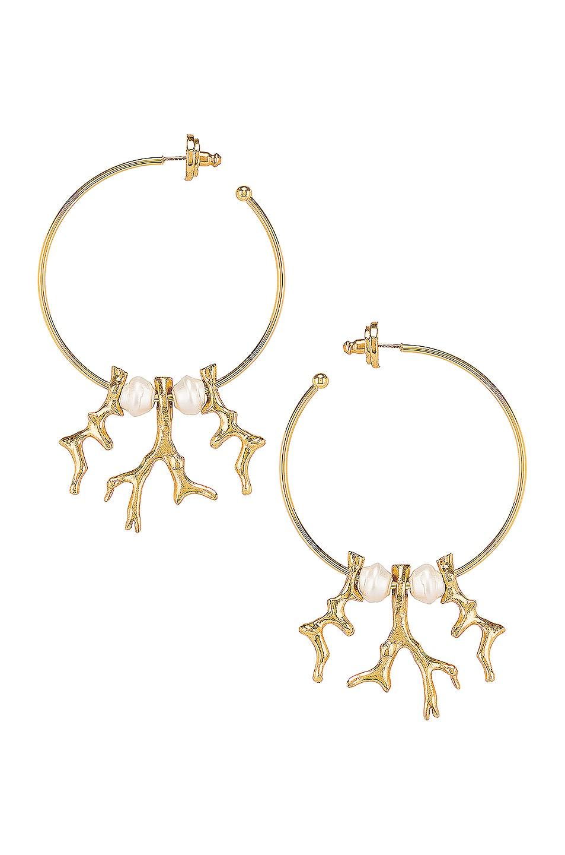 Image 1 of Oscar de la Renta Coral Metal Branch Earrings in Gold