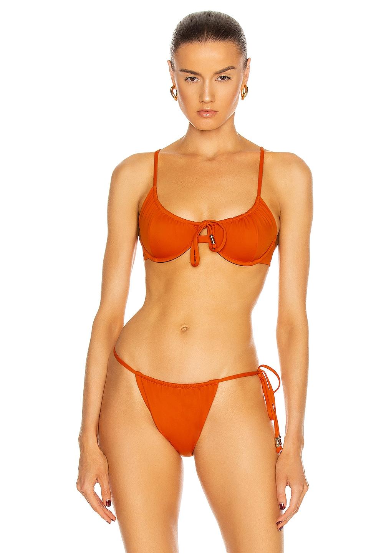 Image 1 of Palm Viper Bikini Top in Valencia
